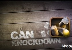 Can Knockdown 1.32 دانلود بازی ضربه به قوطی + مود