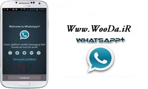 whats app+