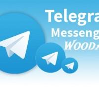 telegram-teaser-rcm992x0